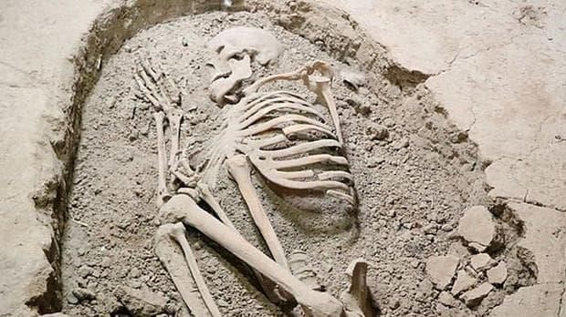 Скелет от Асикли Хоюк