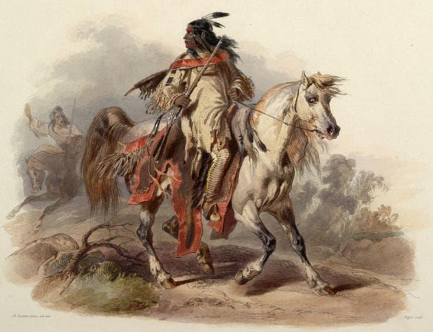 Индианец язди кон