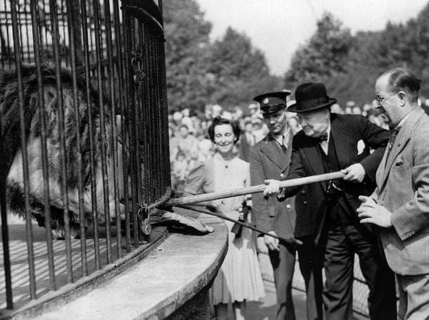 Домашният любимец на Чърчил