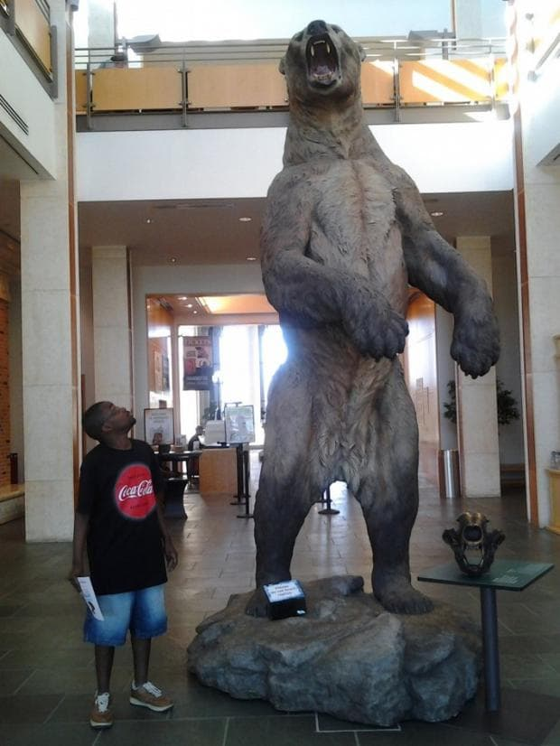 гигантска мечка