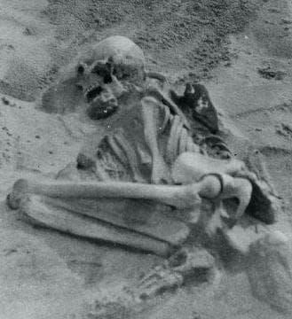 Откритият скелет в Тайри