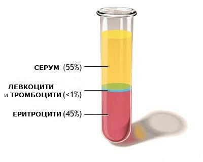 Метод на провеждане на изследването