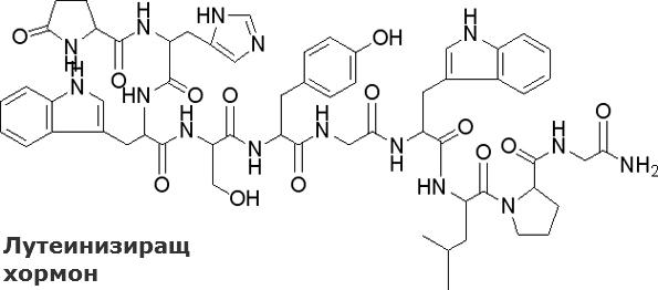 Молекула на лутеинизиращ хормон