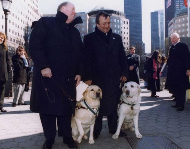 Хора с кучета водачи