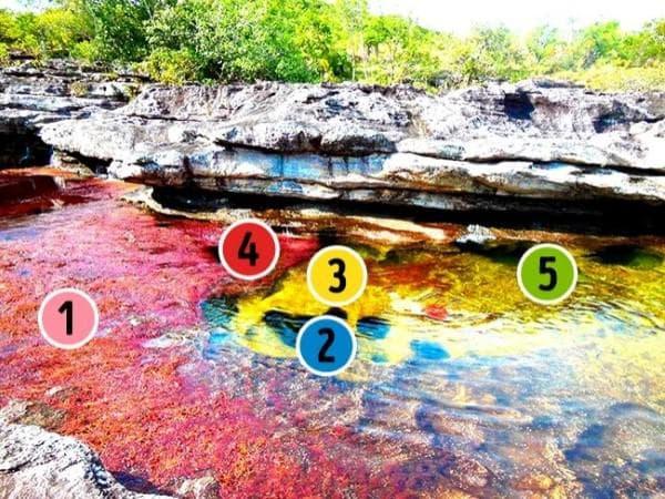 Реката с пет цвята