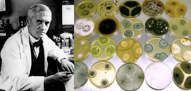 Александър Флеминг и пеницилин