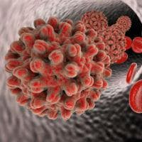Хепатитен вирус В - HBV
