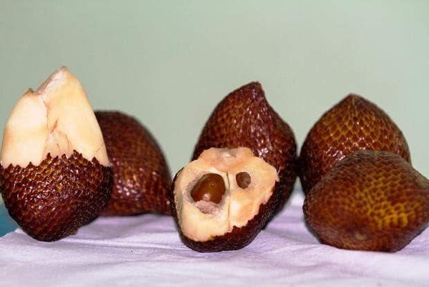 змийски плод