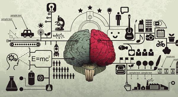 Разбирането на ситуацията и паметта имат различни роли