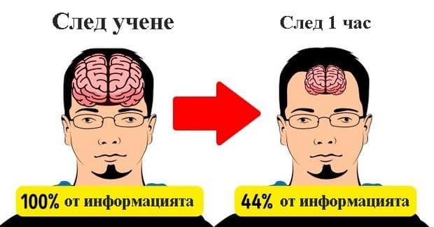 мозъкът след учене