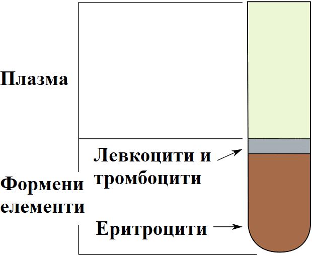 хематокрит