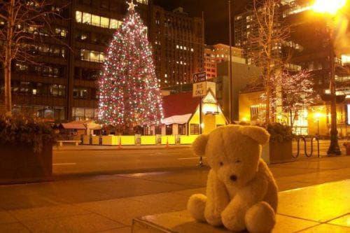 самота, Коледа