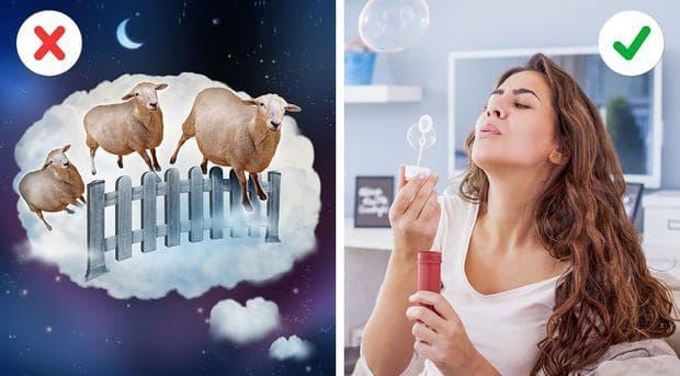 овце и балончета
