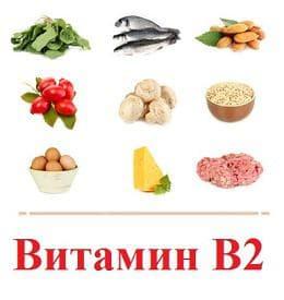 храни, богати на витамин В2