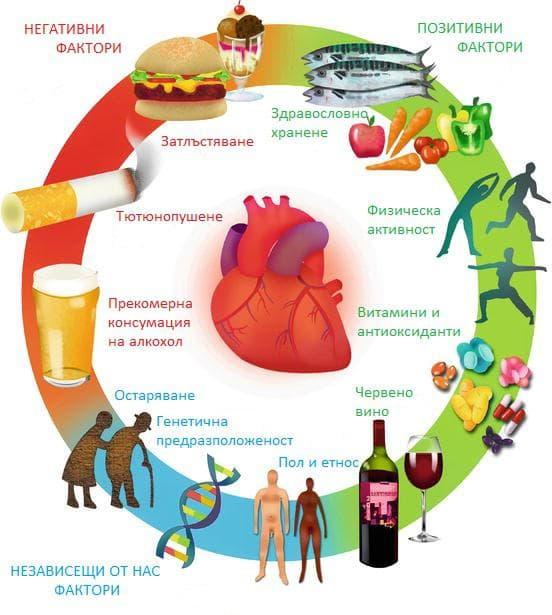 Фактори, оказващи влияние върху сърдечно-съдовите заболявания