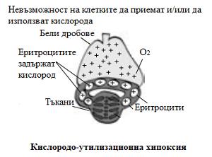 кислородо-утилизационна хипоксия