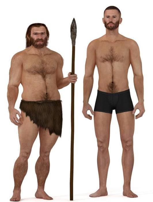 Сравнение между неандерталец и модерен мъж