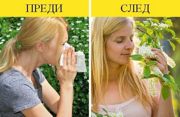 Намаляване на алергиите