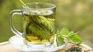 Чай коприва