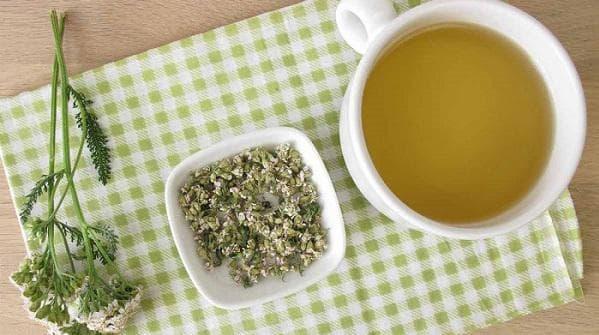 Чай от бял равнец