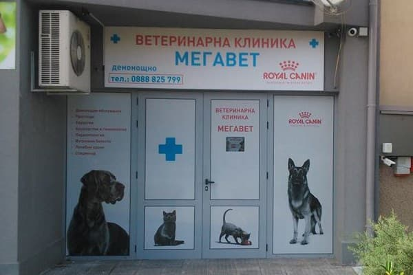 megawet