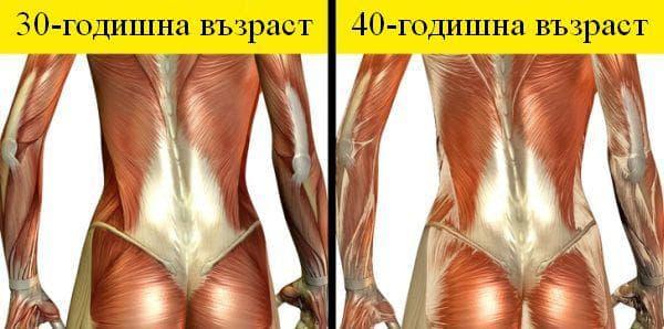 Промени в тялото от 30 до 40-годишна възраст