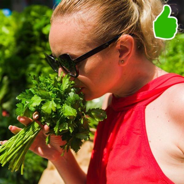 Зеленолистни зеленчуци
