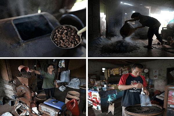 Цикъл на производство на кафе Копи Лувак от малко семейство