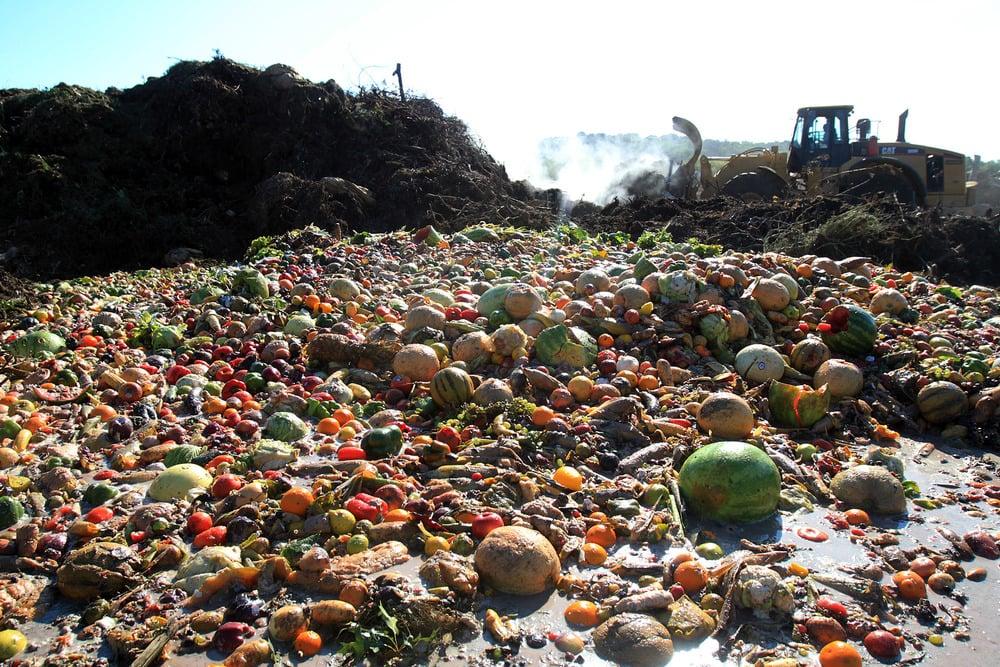 Холандия ще намали драстично количеството изхвърляни храни до 2030
