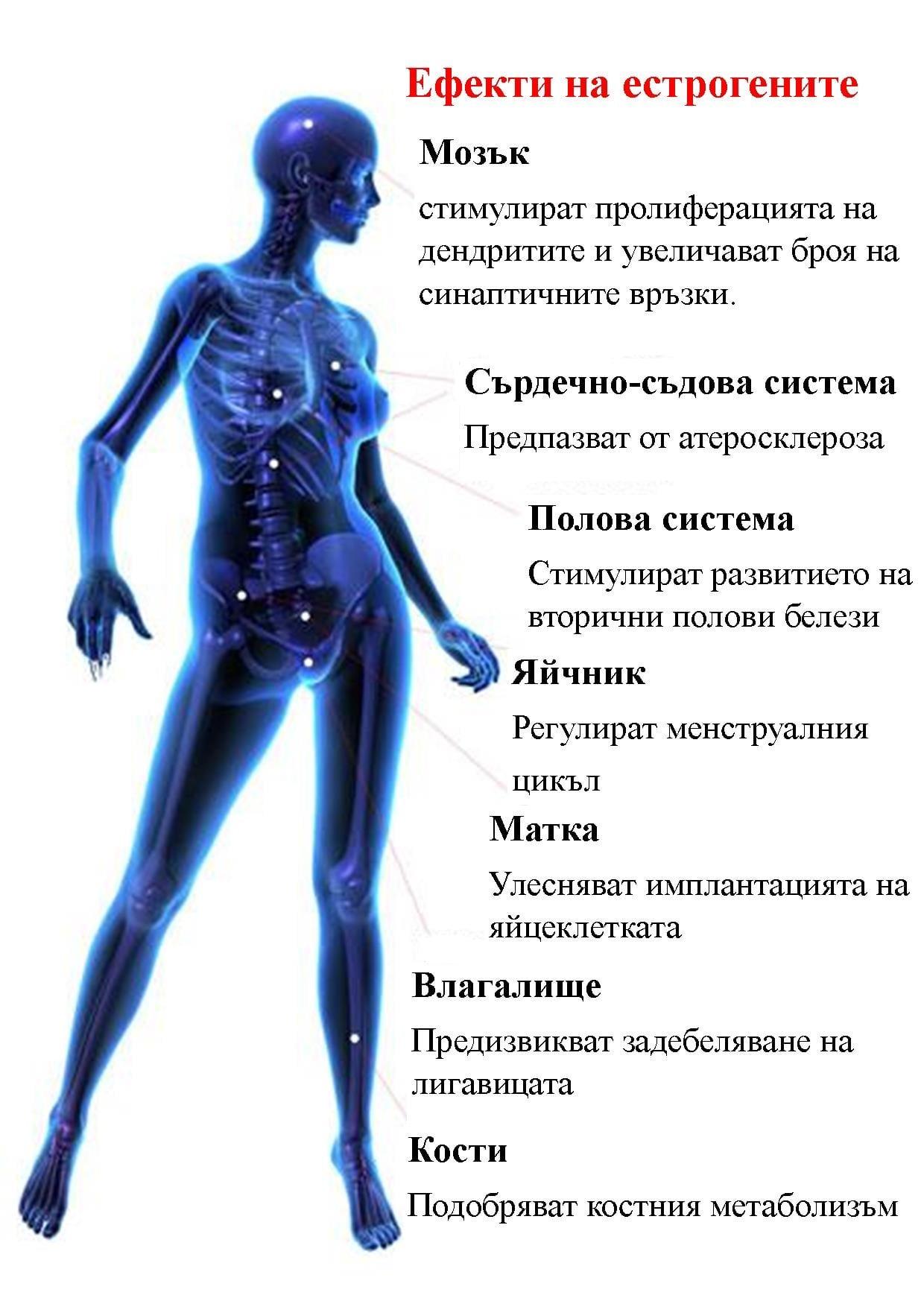 ефекти на естрогени