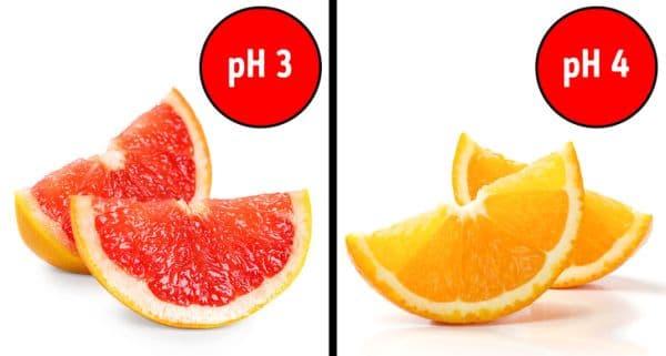 Цитрусови плодове и сокове