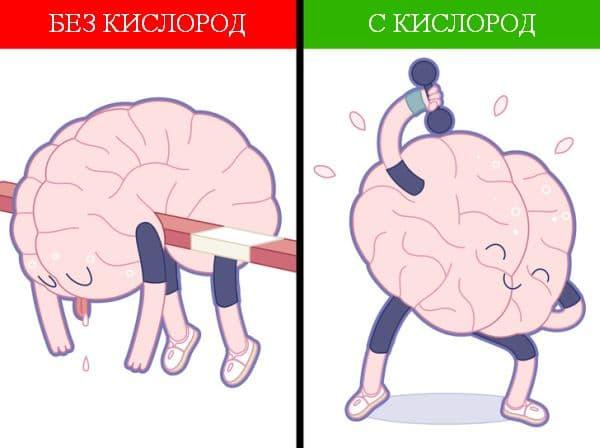 Подобрване на мозъчните и телесните функции