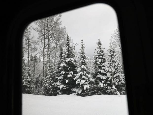 зимен пейзаж от влака