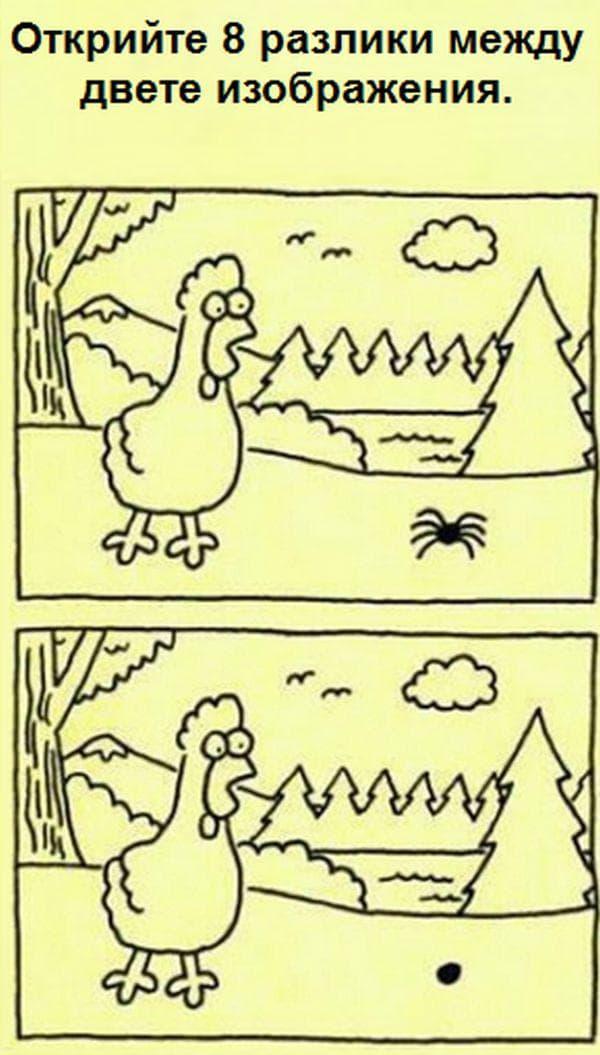 Две изображения.