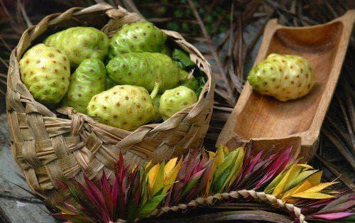 нони плодове