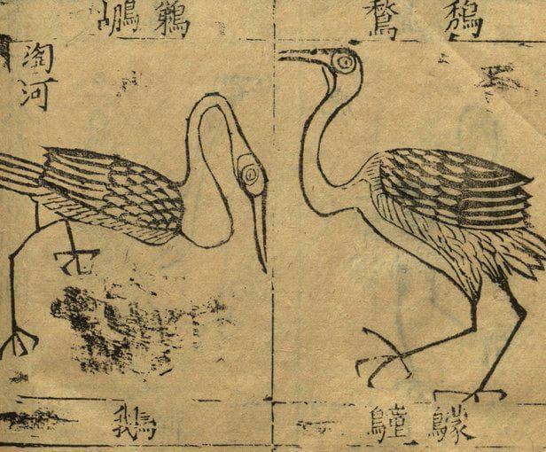 Илюстрации от Бен Као Ганг Му