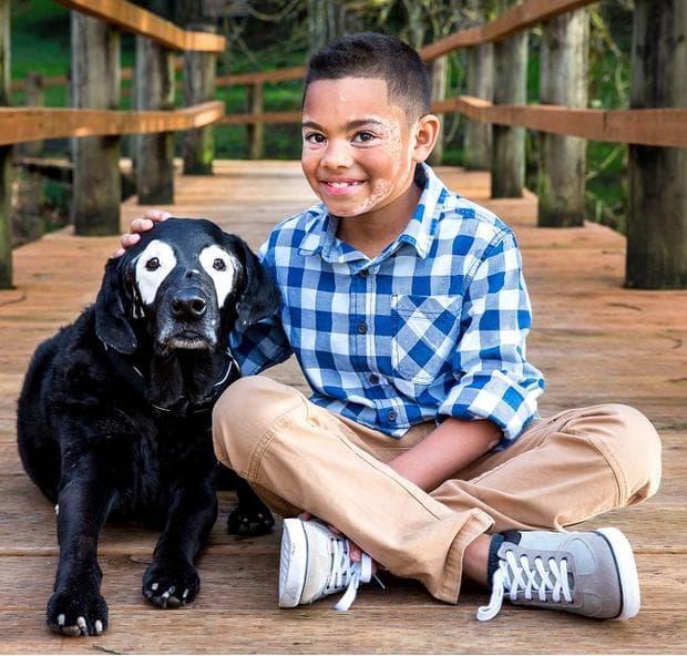 момче и куче