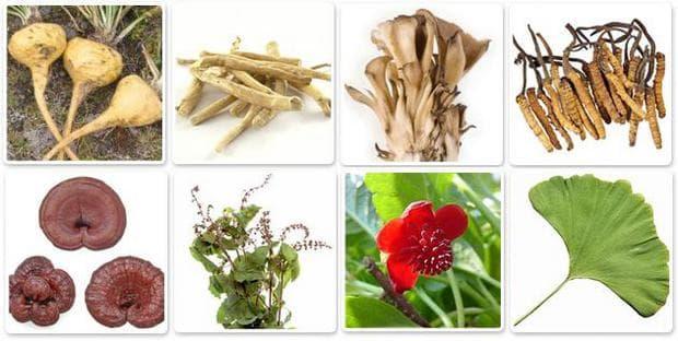 Адаптогенни билки