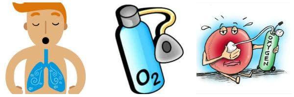 Адекватното усвояване на кислород е необходимо за изпълнение на редица жизненоважни процеси