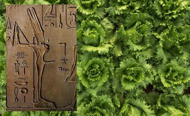 Египетският бог Мин и маруля