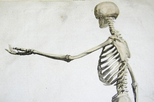 Алкална фосфатаза при костно заболяване