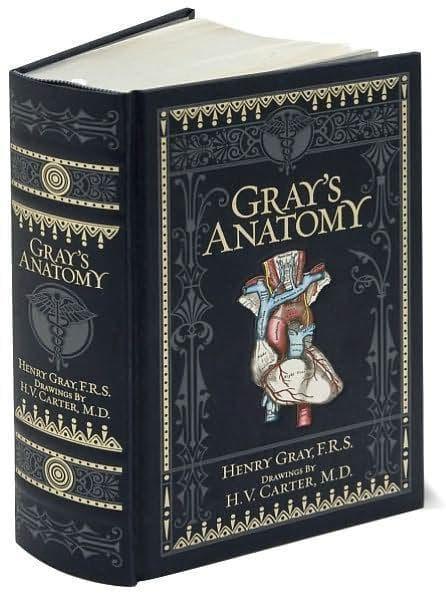 Анатомията на Грей