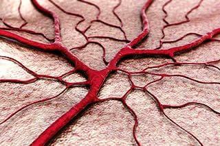 ангиогенеза