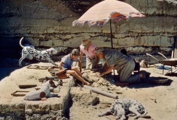 Разкопки в Олдувай