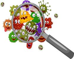 bacteria-horde