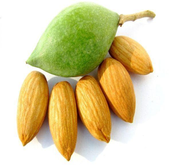 Бадемова киселина