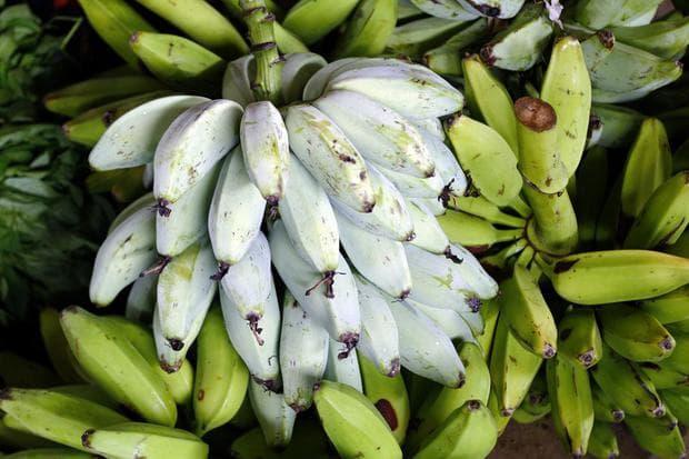 сорт банани за готвене