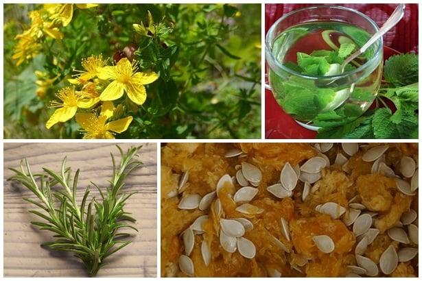 Жълт кантарион,маточина,розмарин,тиквени семки