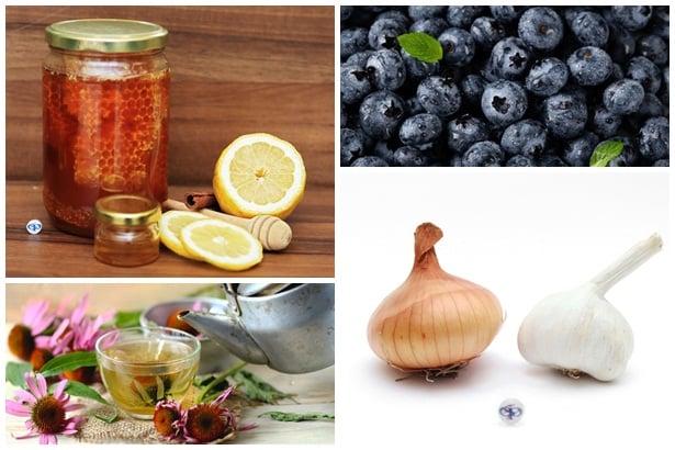мед,лимон,горски плодове,ехинацея, чесън и лук