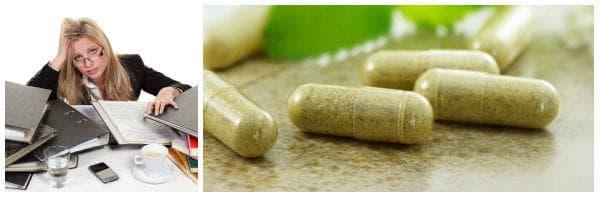 Билки и билкови лекарства за успокояване на нервната система
